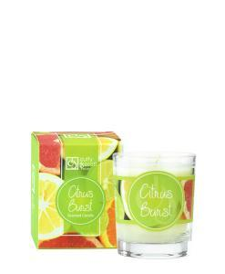 Citrus Burst Scented Travel Candle